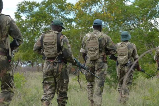 Image of rangers on patrol in uMkhuze Game Reserve in South Africa