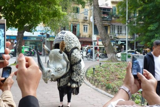 Image of a rhino costume attracting public attention in Vietnam