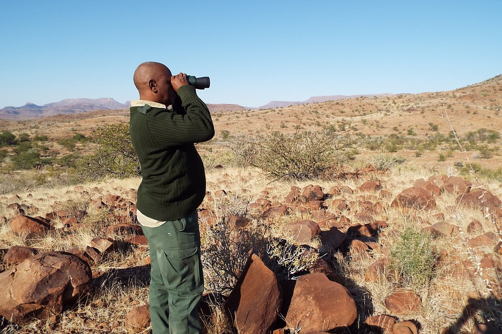 Image of a ranger looking for rhino in Namibia.