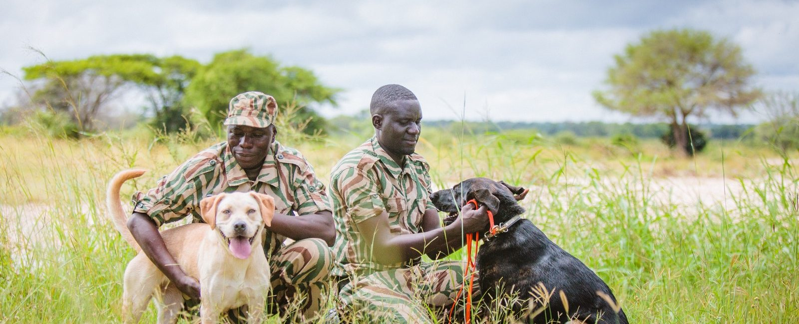 Image of rangers and their tracking and detection dogs who are an invaluable addition to field programmes' anti-poaching patrols and technologies.