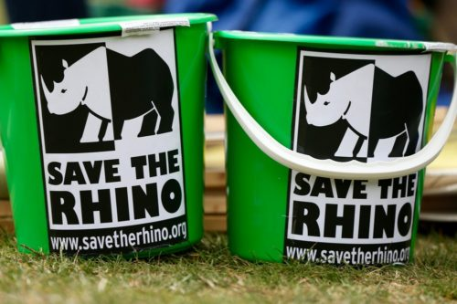 Close up of Save the Rhinos green collection buckets