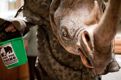 Close up of rhino costume holding green collection bucket