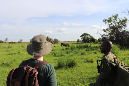 Wills and her ranger looking at rhinos at Ziwa