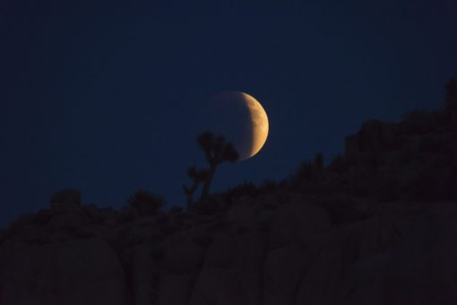 Image of a Blood Moon