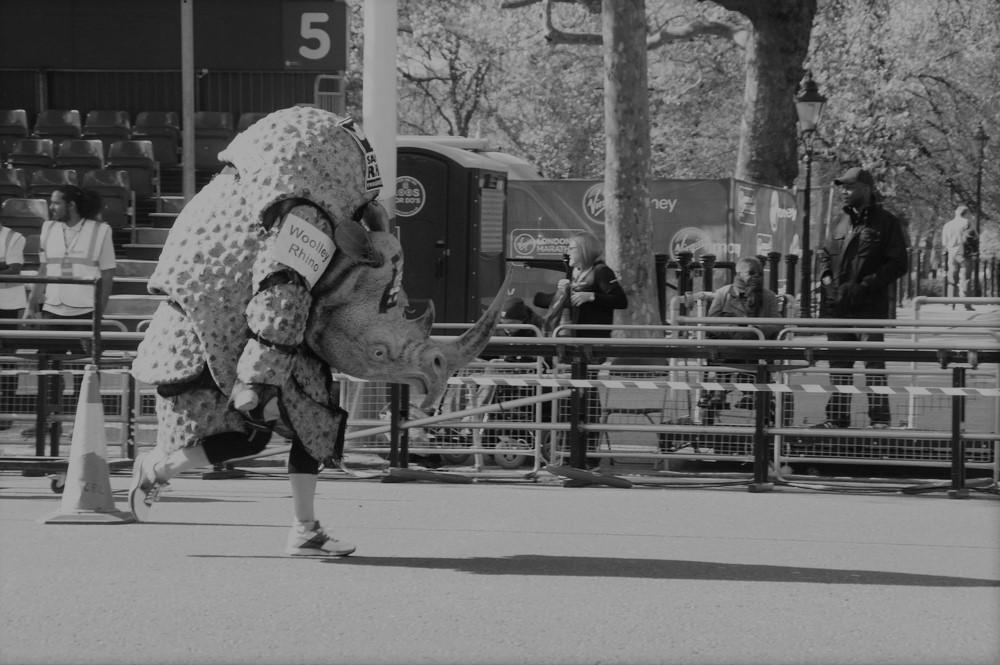 Image of rhino costume runner completing the London Marathon