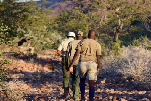 Image of rhino trackers in Namibia.