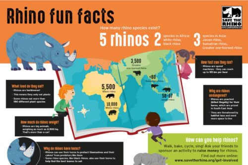 Kids infographic
