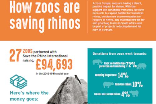 Zoos Help Save Rhinos