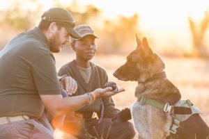 Canine unit training, credit Mana Meadows.
