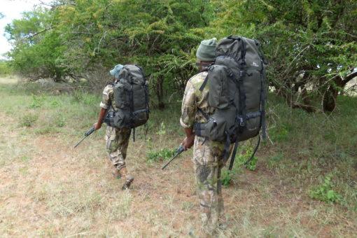 How technology helps rangers at uMkhuze
