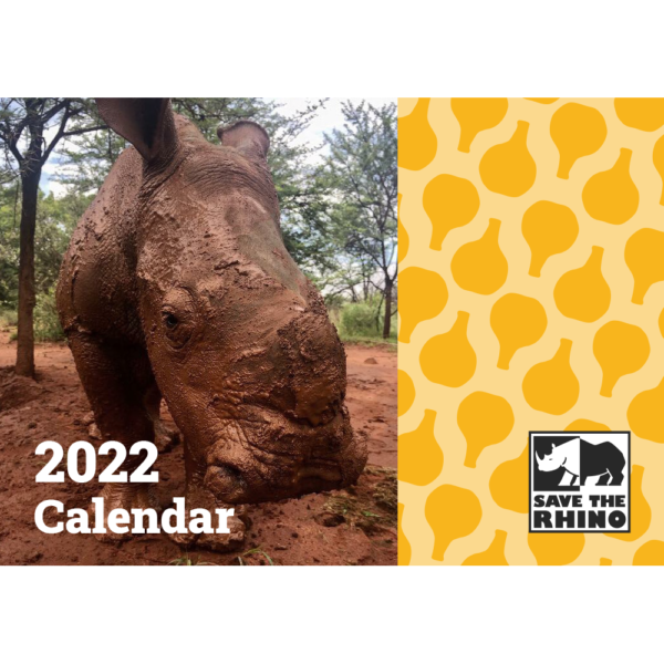 The front cover of the calendar showing a photograph of a young white rhino.