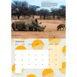 The January 2022 page from the calendar showing the layout including a photograph of a white rhino and a warthog.