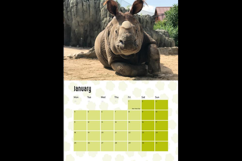 January 2021 Rhino Calendar