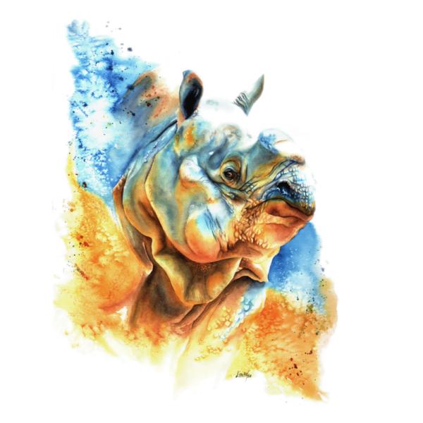 Jaya rhino design